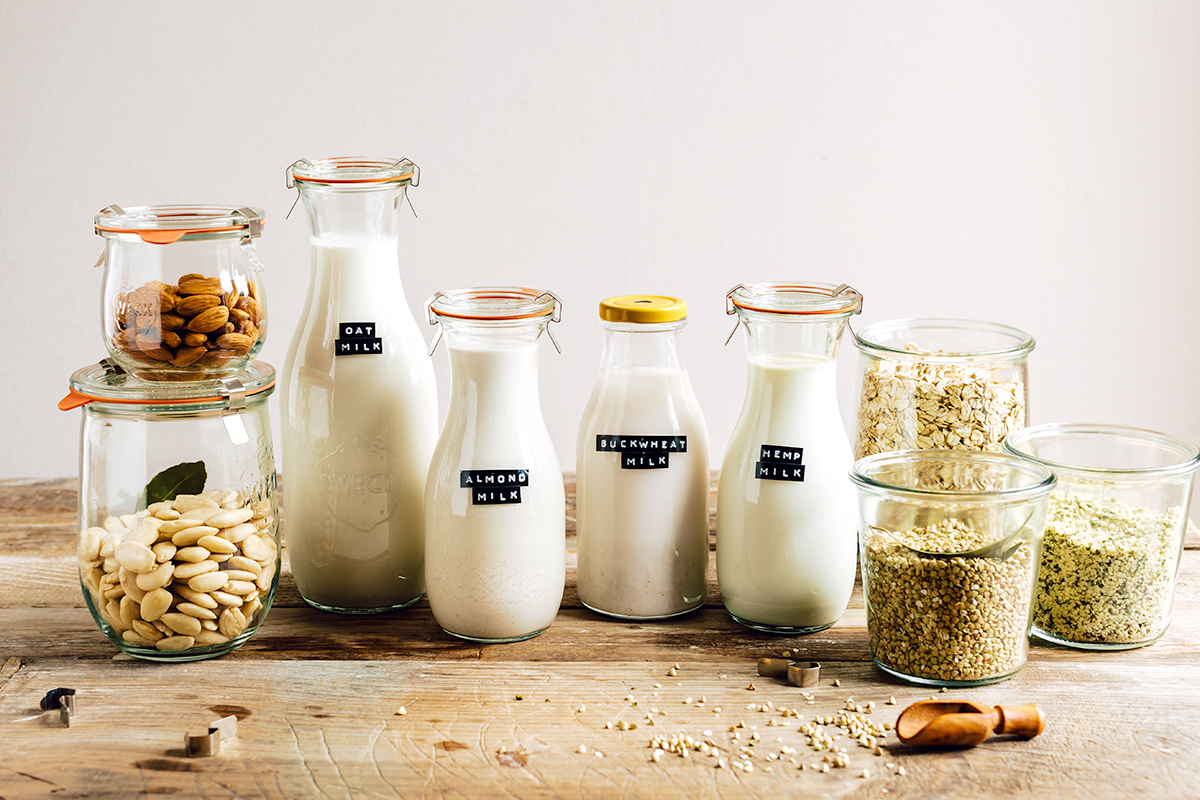 come preparare il LATTE VEGETALE FATTO IN CASA con estrattore o frullatore Mini guida senza lattosio vegan How to make dairy free milk guide vegan slow juicer