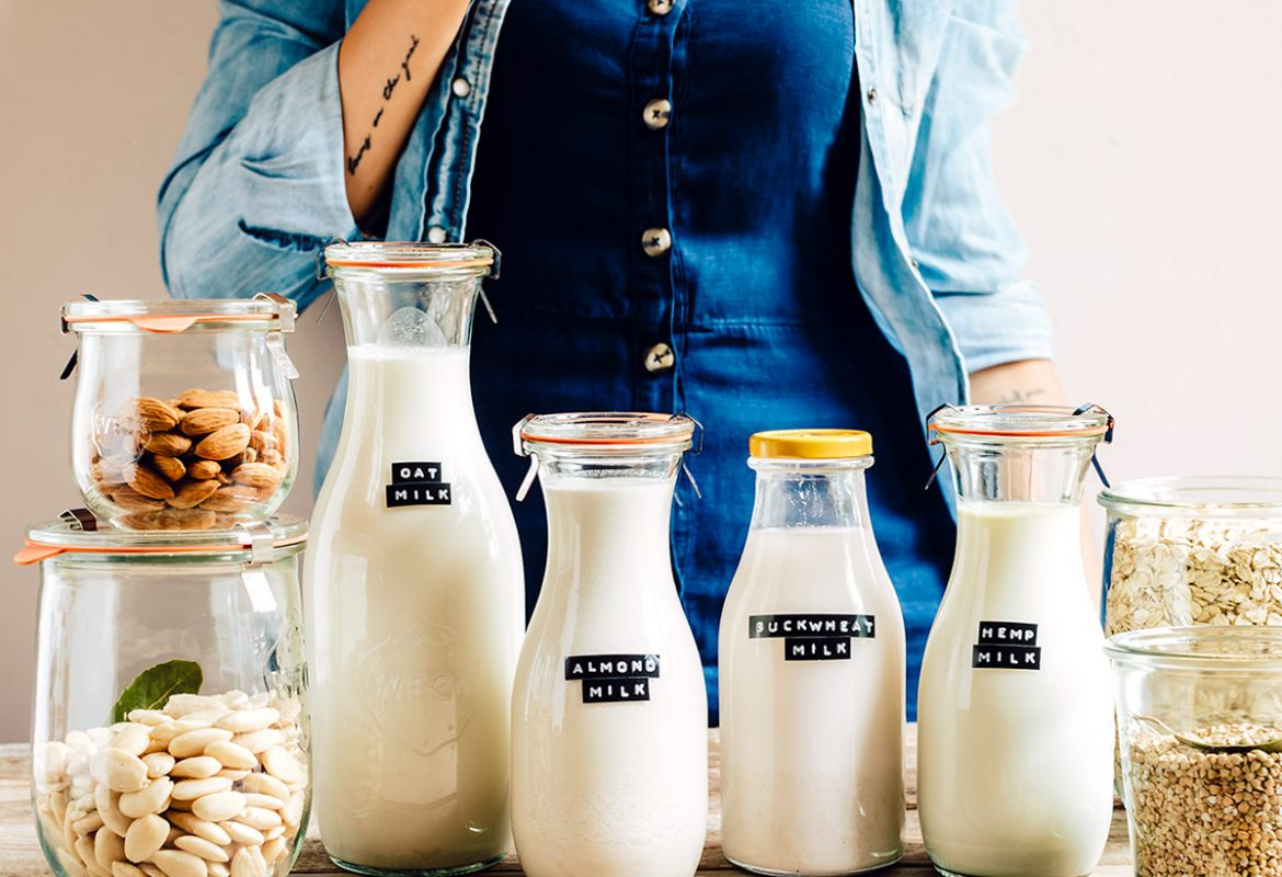 come preparare il LATTE VEGETALE FATTO IN CASA con estrattore o frullatore senza lattosio vegan How to make dairy free milk guide vegan with slow juicer
