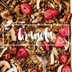 indice ricette granola vegan senza glutine